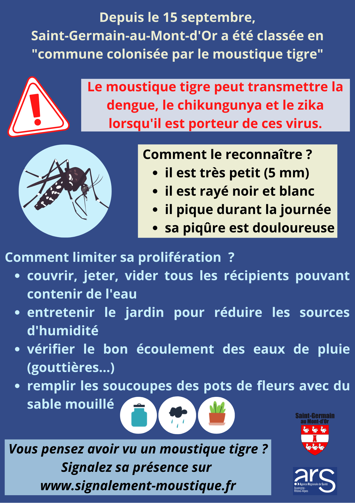 Informations moustique tigre