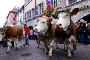 "Sortie ""Descente des Alpages"" @ Annecy"